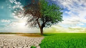 desertgreen